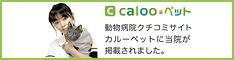 Calooペット